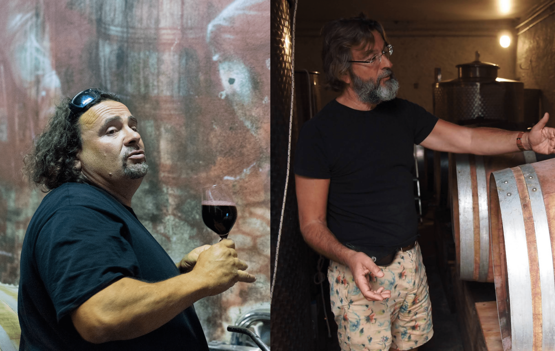 Artisans vignerons BIO et Naturels
